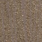 Zebra mica- Gray  -800x640